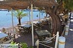 Skala - Island of Patmos - Greece  Photo 71 - Photo JustGreece.com