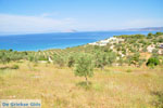 Koilada (Kilada) | Argolida (Argolis) Peloponnese | Greece Photo 17 - Photo JustGreece.com