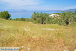 Koilada (Kilada) | Argolida (Argolis) Peloponnese | Greece Photo 26 - Photo JustGreece.com
