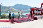 Koilada (Kilada) | Argolida (Argolis) Peloponnese | Greece Photo 34 - Photo JustGreece.com