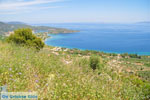 Near old Epidavros | Argolida (Argolis) Peloponnese | Greece Photo 8 - Photo JustGreece.com