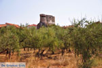 JustGreece.com Agios Nikolaos in Mani | Messenia Peloponnese | Photo 2 - Foto van JustGreece.com