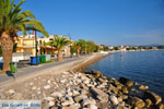 Petalidi | Messenia Peloponnese | Greece  4 - Photo JustGreece.com