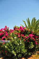 Methoni | Messenia Peloponnese | Greece  Photo 73 - Photo JustGreece.com