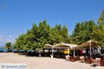JustGreece.com Pylos (Navarino) | Messenia Peloponnese | Photo 29 - Foto van JustGreece.com