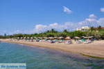 JustGreece.com Gialova | Messenia Peloponnese | Photo 1 - Foto van JustGreece.com