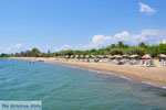 JustGreece.com Gialova | Messenia Peloponnese | Photo 3 - Foto van JustGreece.com