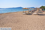 JustGreece.com Gialova | Messenia Peloponnese | Photo 8 - Foto van JustGreece.com
