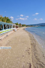 JustGreece.com Gialova | Messenia Peloponnese | Photo 11 - Foto van JustGreece.com