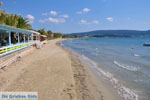 JustGreece.com Gialova | Messenia Peloponnese | Photo 12 - Foto van JustGreece.com