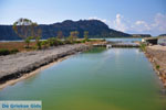 JustGreece.com Gialova | Messenia Peloponnese | Photo 19 - Foto van JustGreece.com