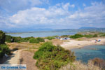 JustGreece.com Near Gialova and Voidokilia | Messenia Peloponnese | Photo 9 - Foto van JustGreece.com
