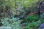 JustGreece.com Waterfalls Polilimnio | Messenia Peloponnese | Photo 3 - Foto van JustGreece.com