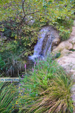 JustGreece.com Waterfalls Polilimnio | Messenia Peloponnese | Photo 10 - Foto van JustGreece.com