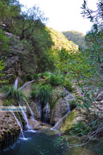 JustGreece.com Waterfalls Polilimnio | Messenia Peloponnese | Photo 18 - Foto van JustGreece.com
