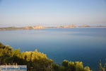 JustGreece.com Pylos (Navarino) | Messenia Peloponnese | Photo 38 - Foto van JustGreece.com