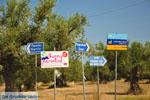 JustGreece.com Sani near Kyparissia | Messenia Peloponnese | 1 - Foto van JustGreece.com