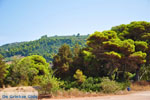 Agiannakis beach | Messenia Peloponnese | Photo 1 - Photo JustGreece.com