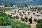 JustGreece.com Ancient Messini Ithomi | Messenia Peloponnese | Photo 4 - Foto van JustGreece.com