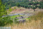JustGreece.com Ancient Messini Ithomi | Messenia Peloponnese | Photo 17 - Foto van JustGreece.com