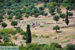JustGreece.com Ancient Messini Ithomi | Messenia Peloponnese | Photo 19 - Foto van JustGreece.com