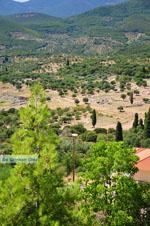 JustGreece.com Ancient Messini Ithomi   Messenia Peloponnese   Photo 25 - Foto van JustGreece.com