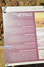 Kalamata | Messenia Peloponnese | Greece  30 - Photo JustGreece.com