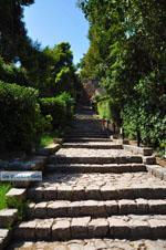Kalamata | Messenia Peloponnese | Greece  31 - Photo JustGreece.com