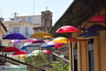 JustGreece.com Kalamata   Messenia Peloponnese   Greece  44 - Foto van JustGreece.com