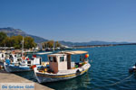 Kalamata | Messenia Peloponnese | Greece  66 - Photo JustGreece.com