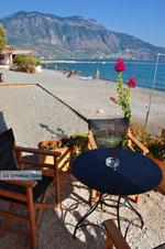 JustGreece.com Kalamata | Messenia Peloponnese | Greece  67 - Foto van JustGreece.com