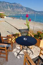 Kalamata | Messenia Peloponnese | Greece  68 - Photo JustGreece.com