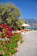 JustGreece.com Kalamata | Messenia Peloponnese | Greece  71 - Foto van JustGreece.com