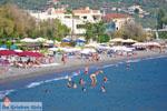 Kalamata | Messenia Peloponnese | Greece  78 - Photo JustGreece.com