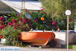 JustGreece.com Kalamata   Messenia Peloponnese   Greece  82 - Foto van JustGreece.com