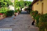 JustGreece.com Mystras (Mistras) | Lakonia Peloponnese | Greece  32 - Foto van JustGreece.com