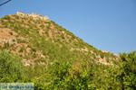 Mystras (Mistras) | Lakonia Peloponnese | Greece  102 - Photo JustGreece.com