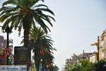 Sparta (Sparti) | Lakonia Peloponnese | Greece  6 - Photo JustGreece.com