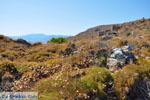 Monemvasia (Monemvassia) | Lakonia Peloponnese | Greece  92 - Photo JustGreece.com
