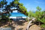 Xylokastro | Corinthia Peloponnese | Greece  14 - Photo JustGreece.com