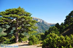 JustGreece.com Mountain villages Ziria | Corinthia Peloponnese | Greece  12 - Foto van JustGreece.com