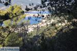 Poros | Saronic Gulf Islands | Greece  Photo 193 - Photo JustGreece.com