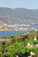 Poros | Saronic Gulf Islands | Greece  Photo 196 - Photo JustGreece.com