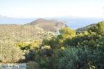 Poros | Saronic Gulf Islands | Greece  Photo 203 - Photo JustGreece.com