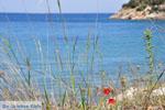 Poros | Saronic Gulf Islands | Greece  Photo 256 - Photo JustGreece.com