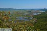 Ammoudia, Acheron delta - Prefecture Preveza -  Photo 8 - Photo JustGreece.com