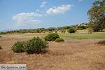 JustGreece.com Afandou Rhodes - Island of Rhodes Dodecanese - Photo 29 - Foto van JustGreece.com