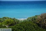 Apolakkia Rhodes - Island of Rhodes Dodecanese - Photo 86 - Photo JustGreece.com