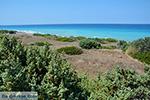 Apolakkia Rhodes - Island of Rhodes Dodecanese - Photo 88 - Photo JustGreece.com