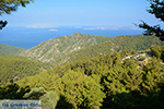 Embonas Rhodes - Island of Rhodes Dodecanese - Photo 19 - Photo JustGreece.com